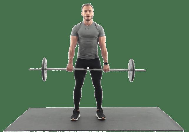 Упражнения на спину со штангой. Упражнения на бицепс, трицепс, предплечье.