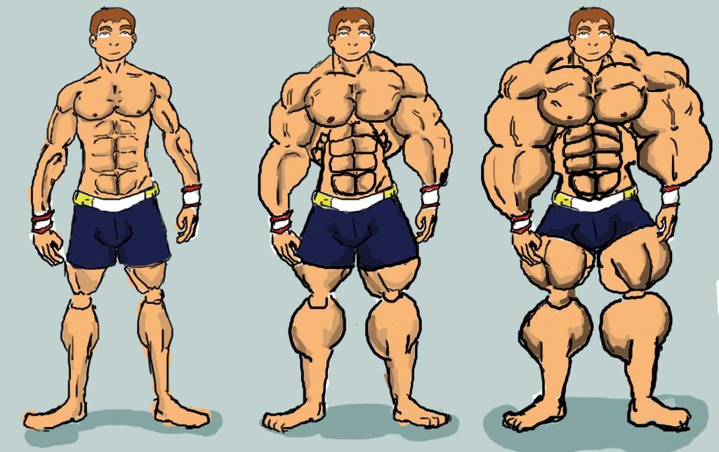 Как растут мышцы. Главные факторы роста.