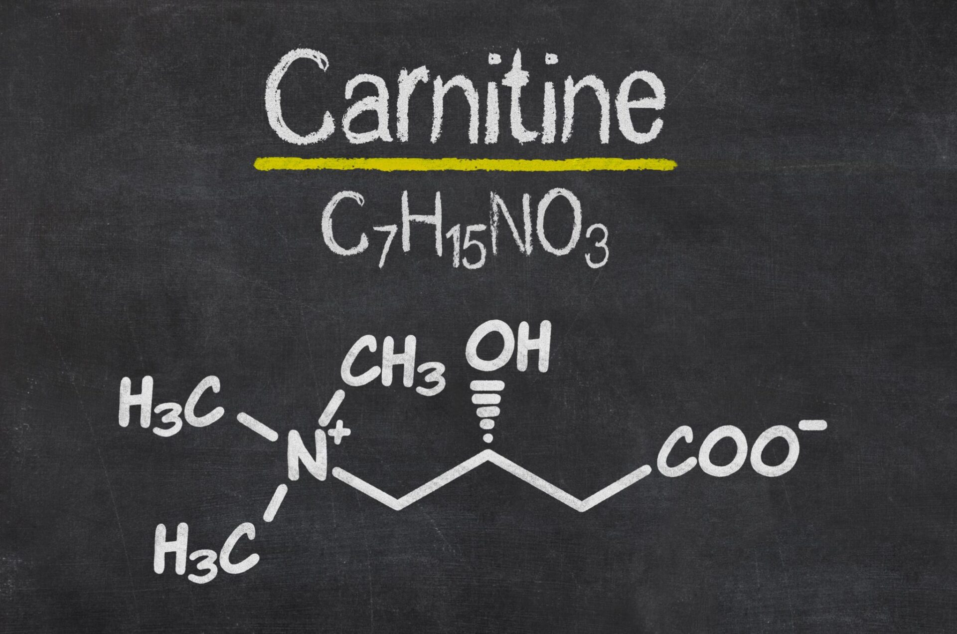 L-Carnitine-