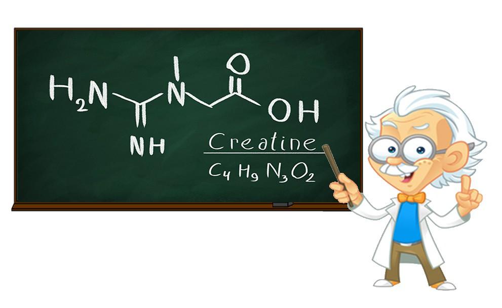 Креатин научные исследования