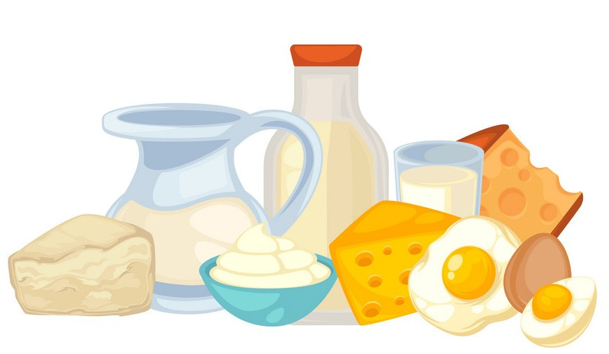 Сколько белка можно съедать за 1 раз и сколько раз в день нужно есть.