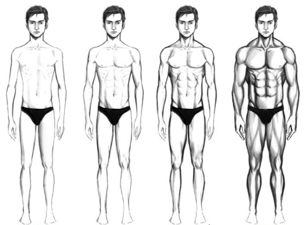 Как тренироваться эктоморфу